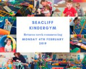 seacliff kindergym Term 1 start date