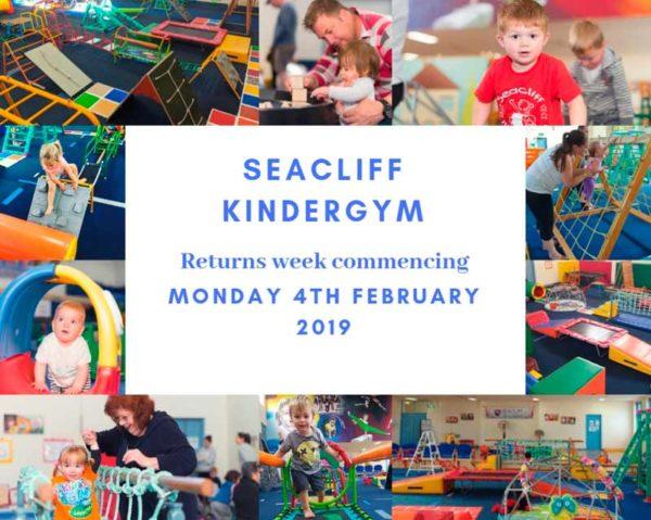 seacliff kindergym Term 1 start date